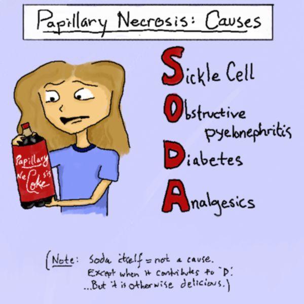 steroids acute renal failure